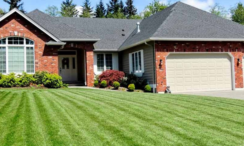 10 Tips for a Better Lawn