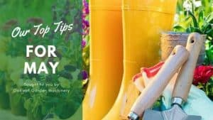 Our Top Tips for May