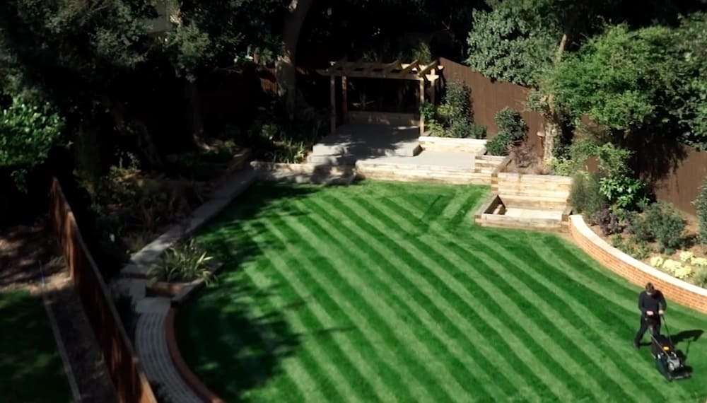 how-to-stripe-a-lawn-main image